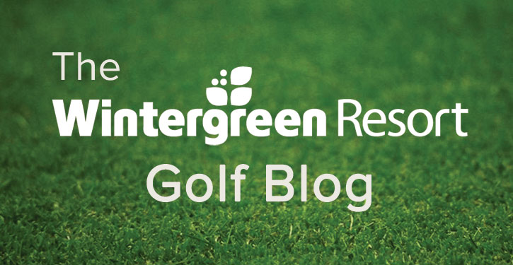 Golf Blog Icon